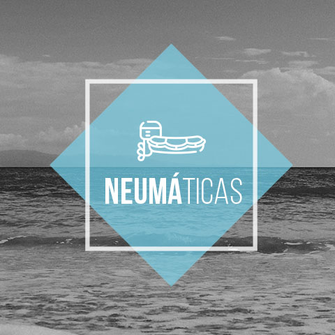 neumatic